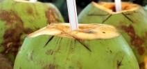 Полезные свойства кокосовой воды
