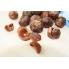 Мыльные орехи - Sapindus Mukorossi (Мукоросси) 250 грамм + мешочек для стирки
