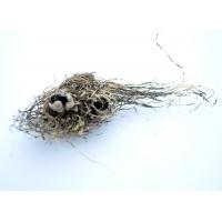 Левзея корень - маралий корень - Leuzea carthamoides 50 г
