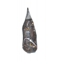 Одуванчик корень - Taraxacum officanale Wigg