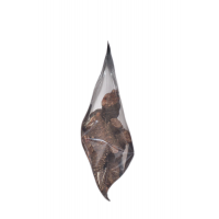Родиола розовая - золотой корень - Rhodíola rósea