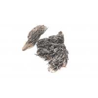 Красная щетка  - Rodiola guadrefida