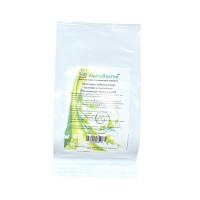 Шлемник байкальский - Scutellaria baicalensis 50 гр